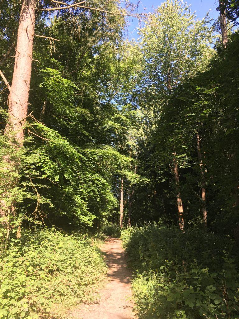 Ashampstead Wiltshire Walk