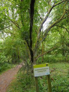 Snelsmore Common Country Park  Berkshire Walk