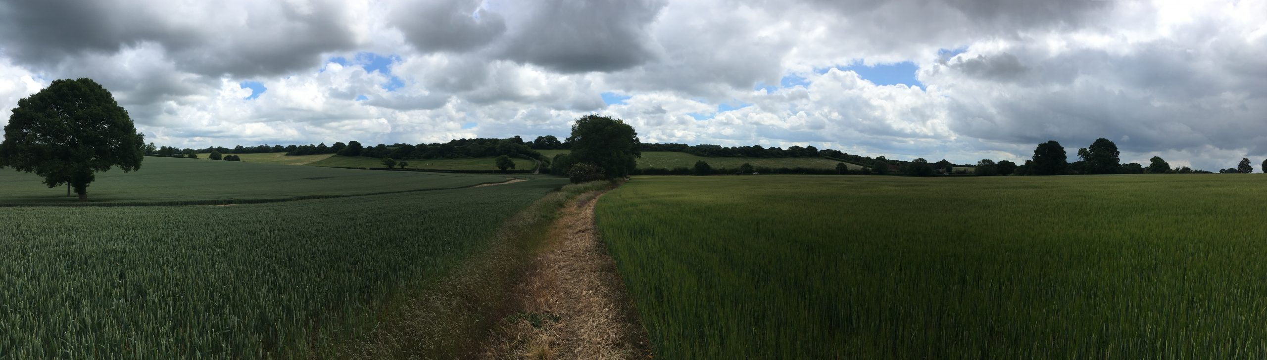 Four Downland Villages Walk